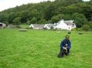 Thiru_farm_sheepdog