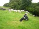 Thiru_with_sheep_dog